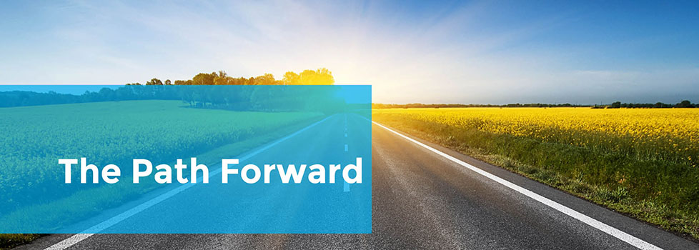 The Path Forward - CPHR Alberta Five Year Action Plan